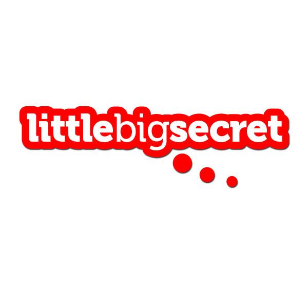 Little Big Secret logo